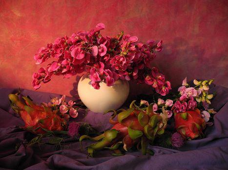 Бесплатные фото цветы,орхидеи,ваза,натюрморт
