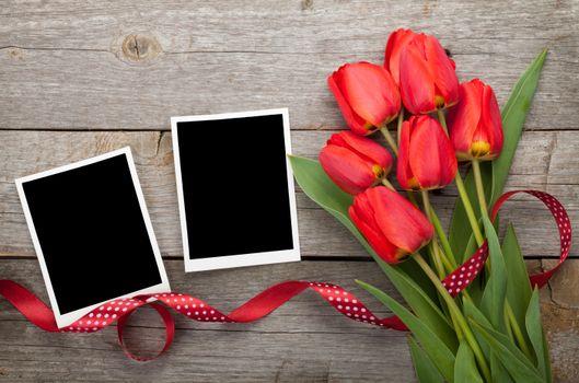 Фото цветы картинки, тюльпаны