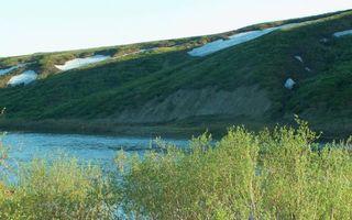 Бесплатные фото макушки деревьев,озеро,холмы,трава,снег,небо