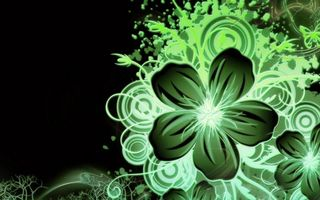 Обои рисунок, цветок, узор, зеленый, фон черный