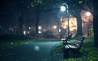 Бесплатные фото парк,скамейки,дорожка,фонарь,деревья