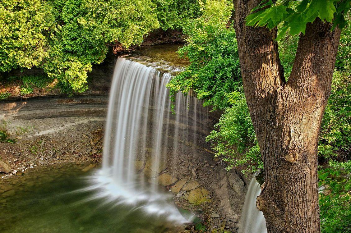 Фото бесплатно bridal veil falls, kagawong, manitoulin island, ontario, водопад, речка, лес, деревья, природа, природа