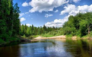 Бесплатные фото река,берег,песок,трава,деревья,небо,облака