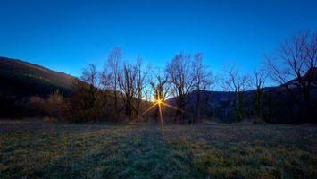 Бесплатные фото весенний восход,солнце,деревья,трава,иней,лучи,синее небо