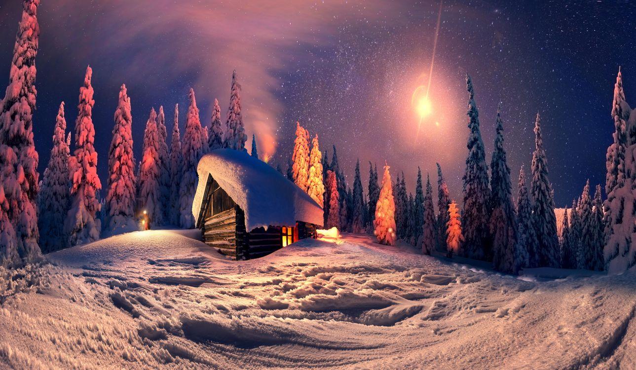 Фото бесплатно лес, снег, Луна - на рабочий стол