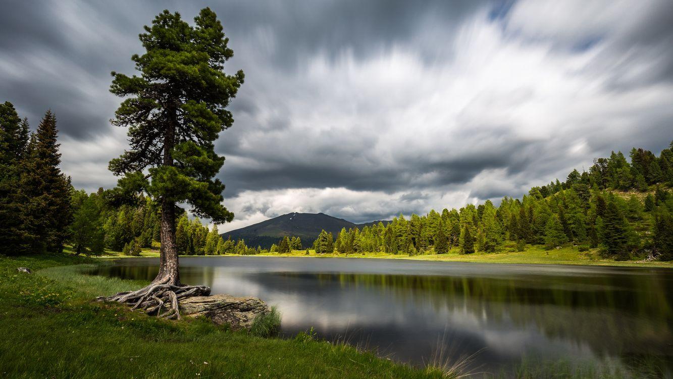 Фото бесплатно озеро, водоём, деревья - на рабочий стол