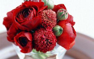 Фото бесплатно ваза, букет, композиция