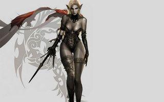 Обои девушка, эльф, воин, меч, фон серый, узоры