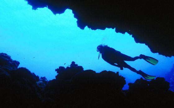 Фото бесплатно море, рифы, водолаз