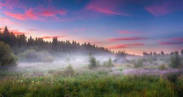 Бесплатные фото поле, туман, домик, деревья, закат, пейзаж