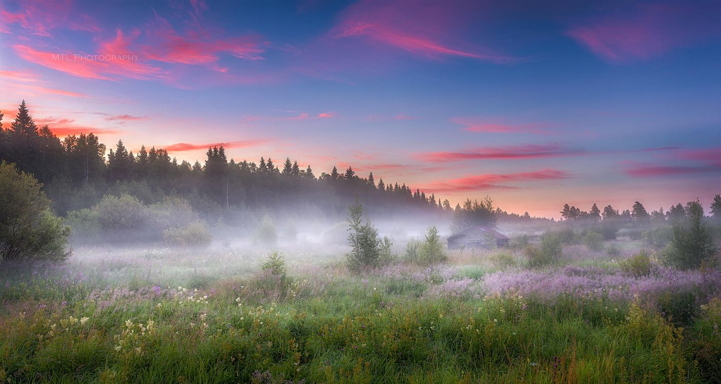Фото бесплатно поле, туман, домик, деревья, закат, пейзаж - на рабочий стол