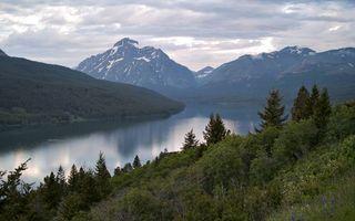 Бесплатные фото горы,трава,деревья,кустарник,вершины,снег,река