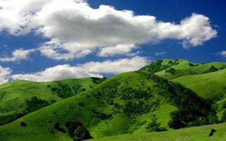 Бесплатные фото холмы,сопки,трава,зеленая,кустарники,небо,облака