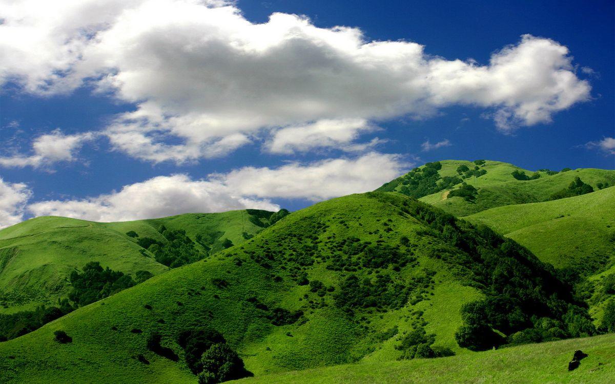 Free photo hills, grass, green, shrubs, sky, clouds - to desktop