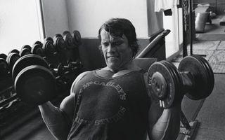 Бесплатные фото Арнольд Шварценеггер,бодибилдер,актер,спортзал,гантели,мышцы,черно-белое