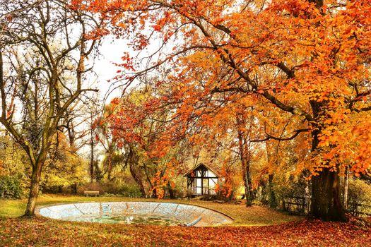 Photo free Baden-W rttemberg, castle park, autumn