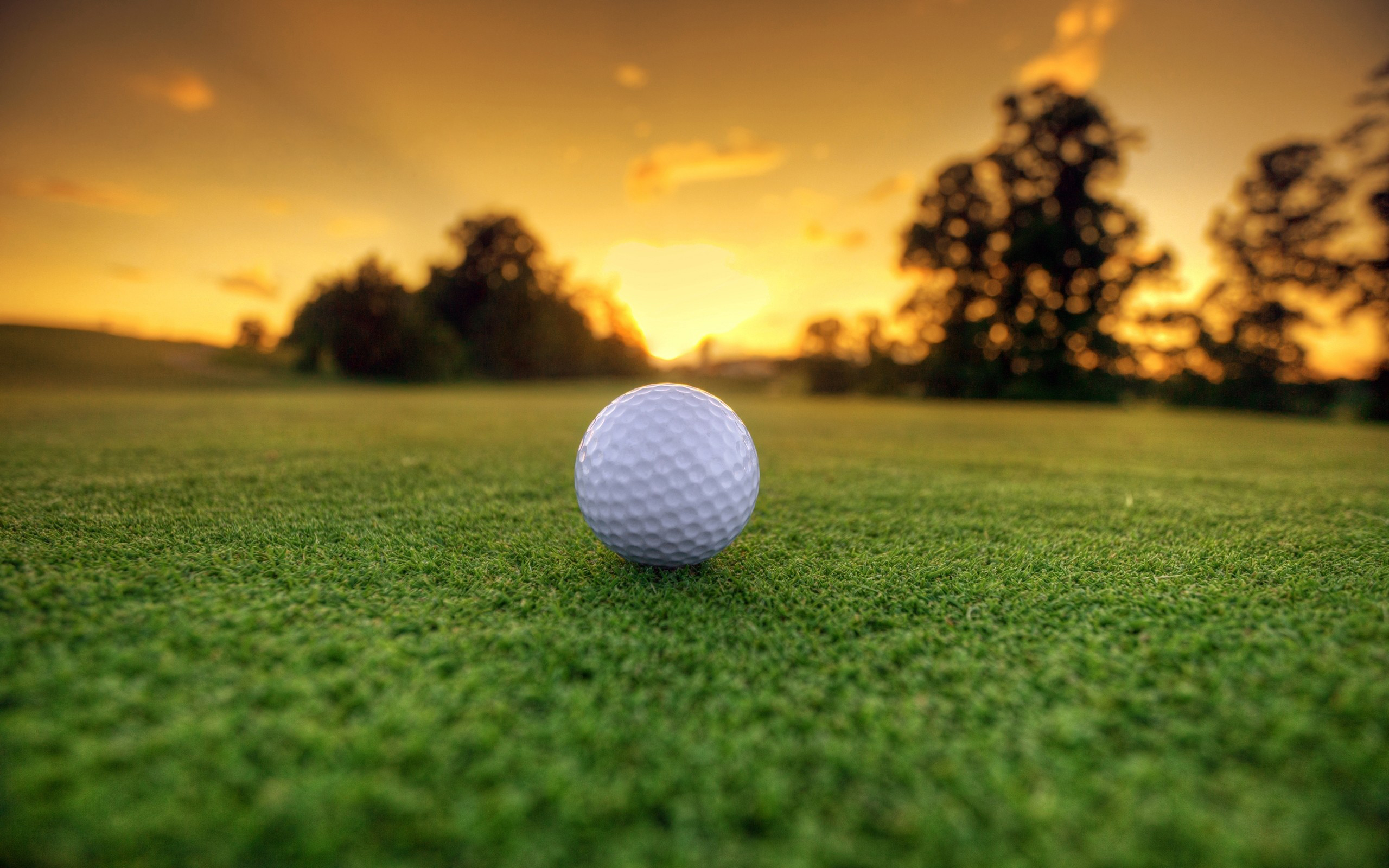 гольф, мяч, газон