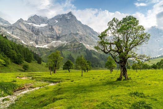 Фото бесплатно Австрия, поля, пейзаж