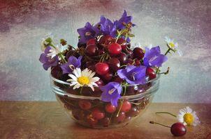 Заставки колокольчик, черешня, ромашки, ягоды