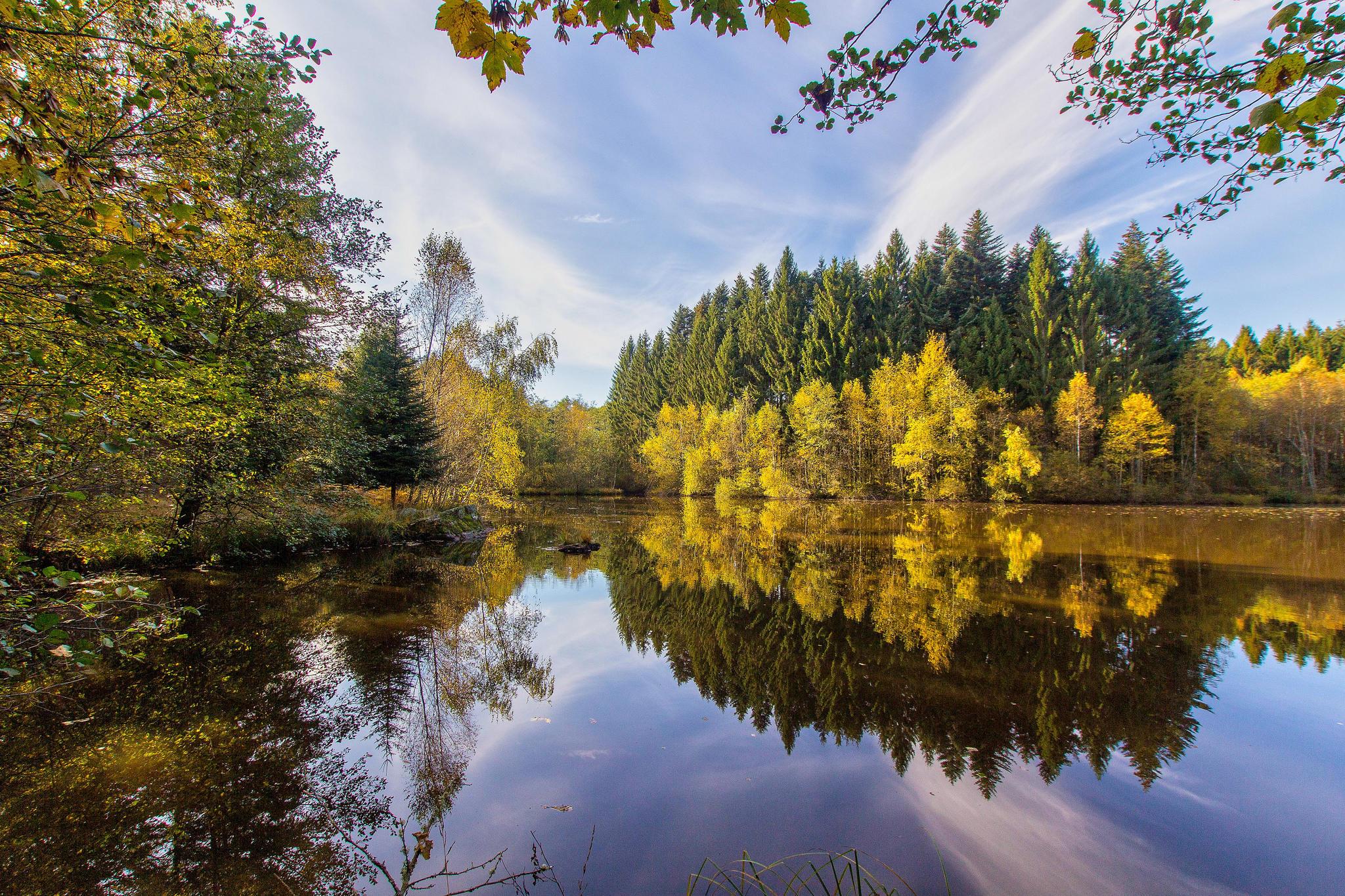 обои на рабочий стол осень природа река озеро лес № 241657 бесплатно