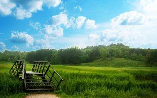Бесплатные фото лето,тропинка,мостик,трава,деревья,небо,облака