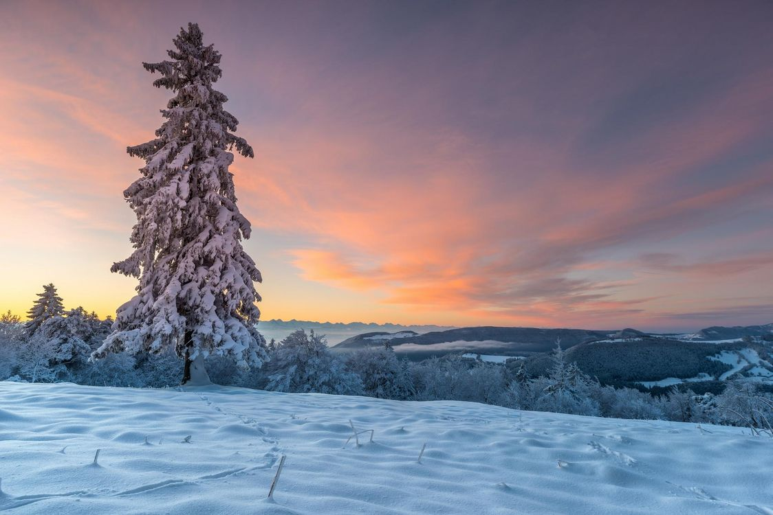 Фото бесплатно закат, зима, снег, деревья, сугробы, горы, Швейцария, пейзаж, пейзажи