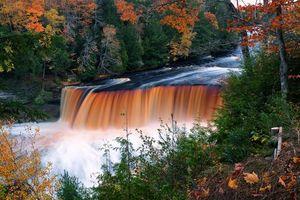 Бесплатные фото upper tahquamenon falls,michigan,осень,река,лес,деревья,водопад