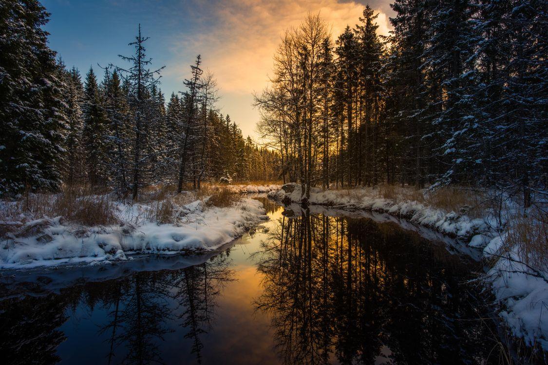 Фото бесплатно Sweden, Mangskog, Arvika, зима, мороз, закат, река, лес, деревья, пейзаж, пейзажи