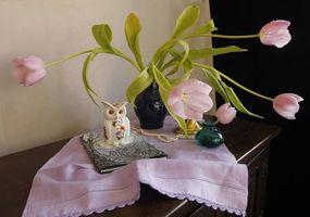 Бесплатные фото ваза,цветы,сова,натюрморт