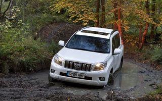 Фото бесплатно тойота, ленд крузер, внедорожник, белый, лес, дорога, лужа, грязь