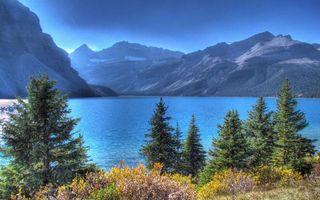 Бесплатные фото трава,кустарник,деревья,озеро,горы,небо