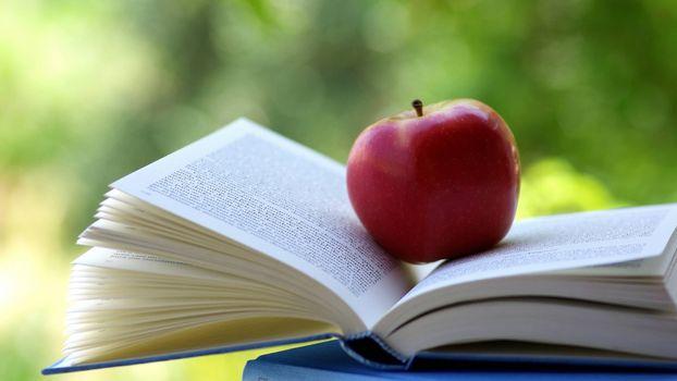 Фото бесплатно яблоко, книга, чтение на природе