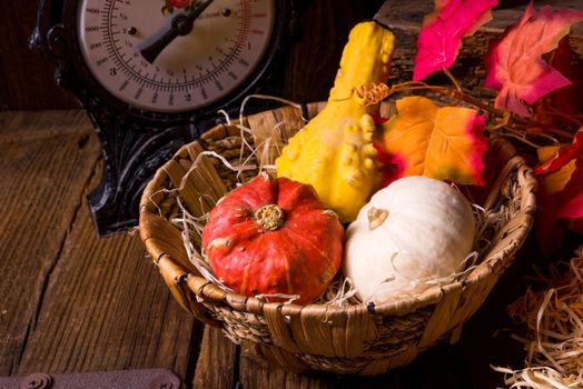 Screensaver autumn composition of vegetables and fruits, basket