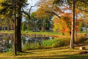 Бесплатные фото Броктон, Плимут, Массачусетс, США, осень, парк, деревья