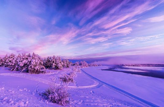 Download winter snow free wallpapers