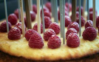 Фото бесплатно блюдо, десерт, ягода, малина, палочки