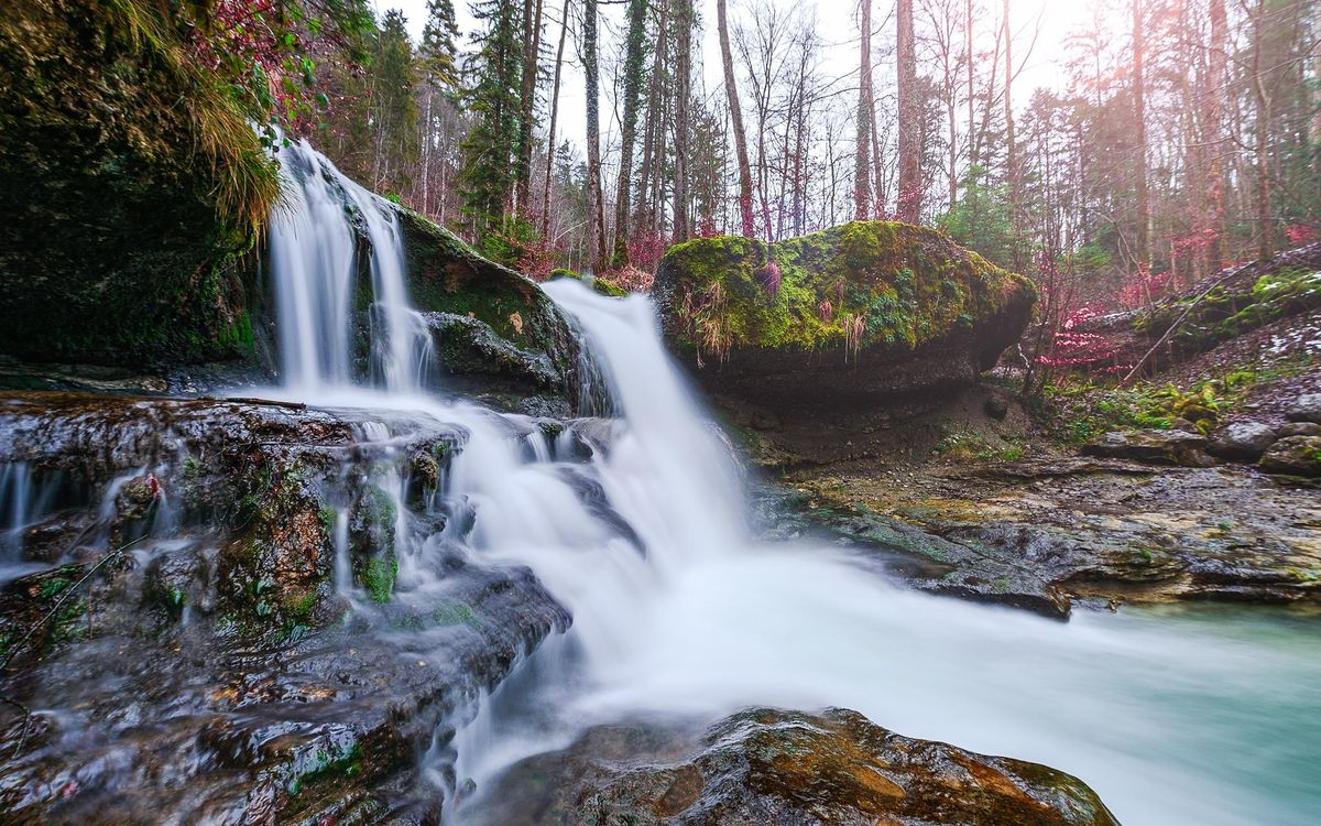 Free photo waterfall, forest, trees - to desktop