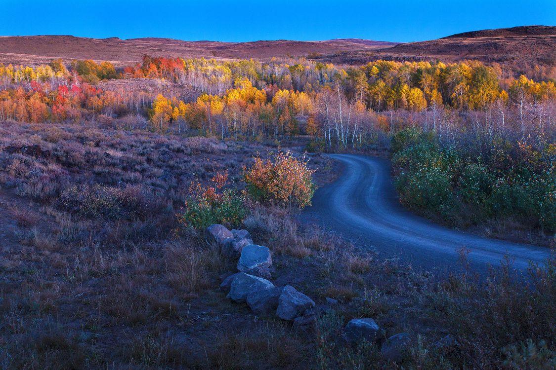Фото бесплатно осень, холмы, деревья, камни, пейзаж, пейзажи