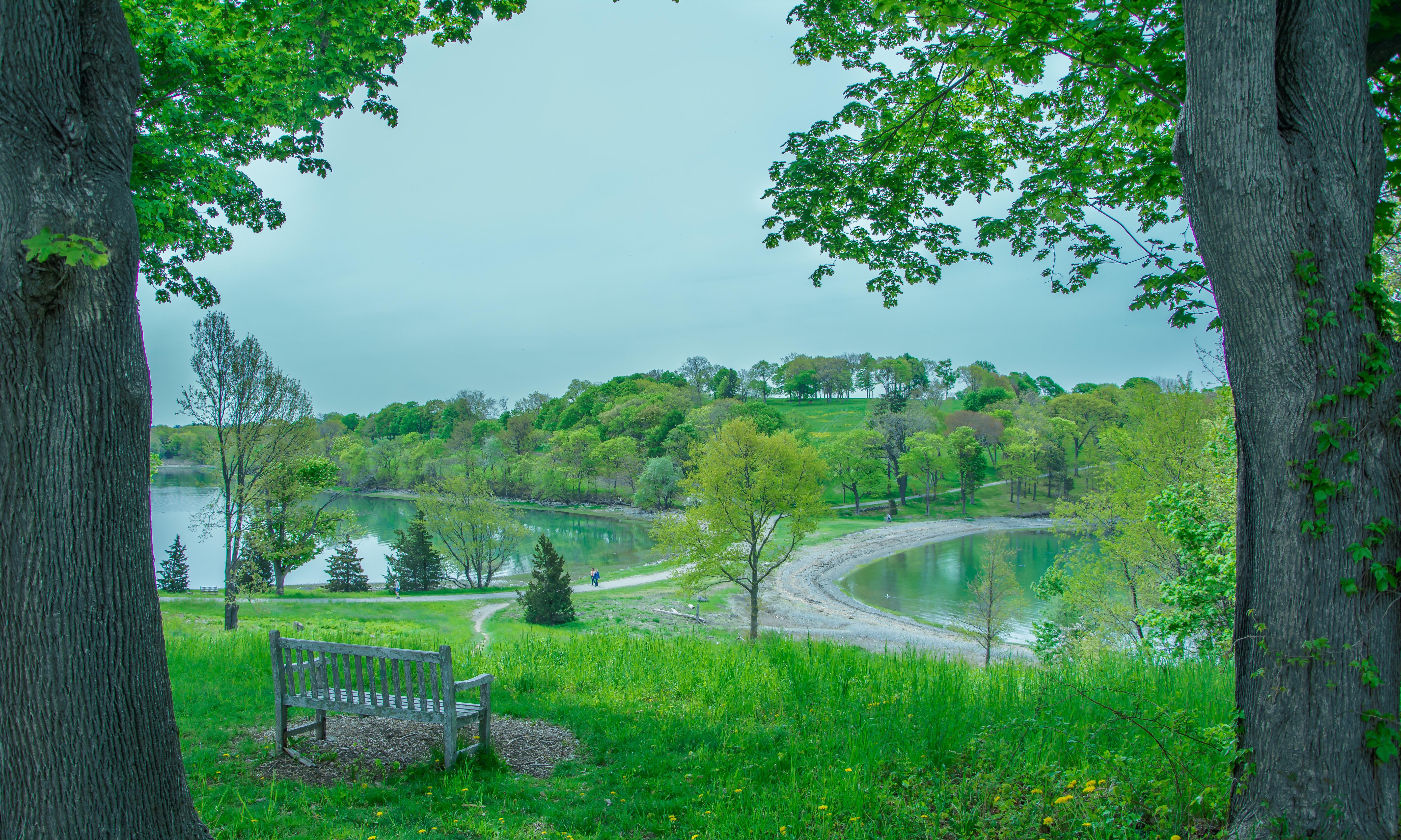 Новая Англия, скамейка, клены