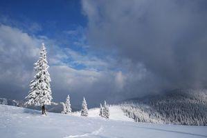 Бесплатные фото зима,снег,сугробы,горы,деревья,пейзаж