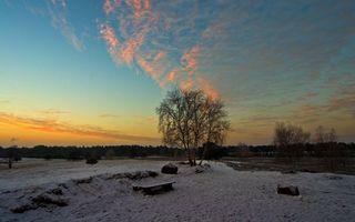 Фото бесплатно осень, снег, грязь