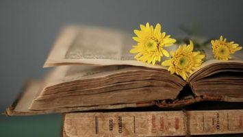 Бесплатные фото Старые книги,обложка,желтые цветы,интерьер