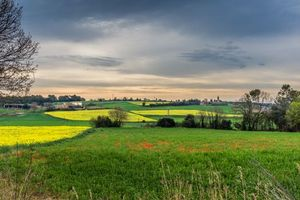 Фото бесплатно поля, деревья, дома, испания, закат, пейзаж