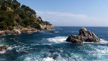 Бесплатные фото побережье, растительность, камни, море, волны, горизонт, небо