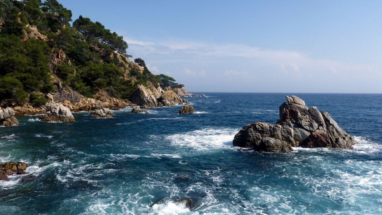 Обои побережье, растительность, камни, море, волны, горизонт, небо картинки на телефон