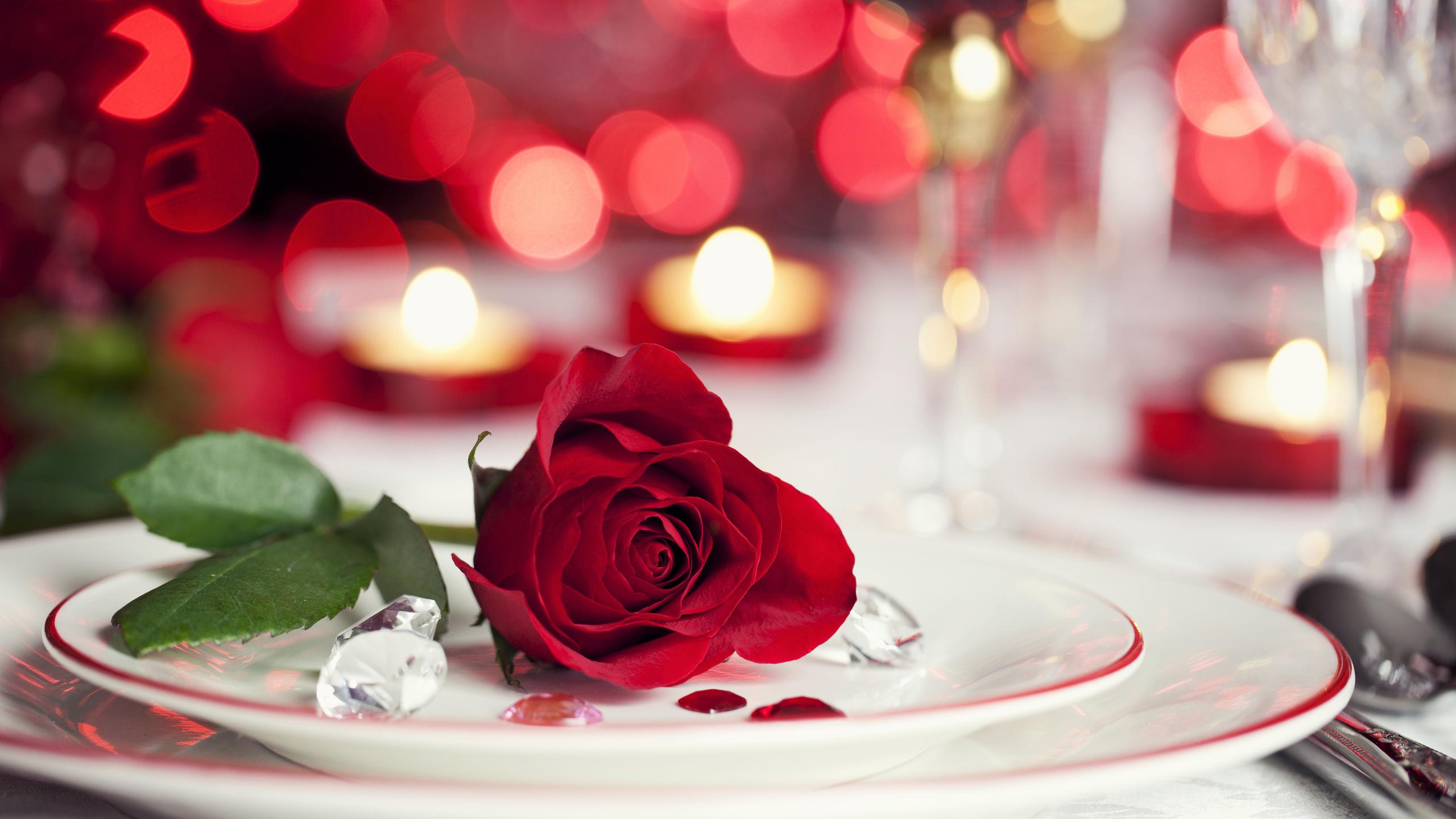 Красные свечи с лепестками роз бесплатно