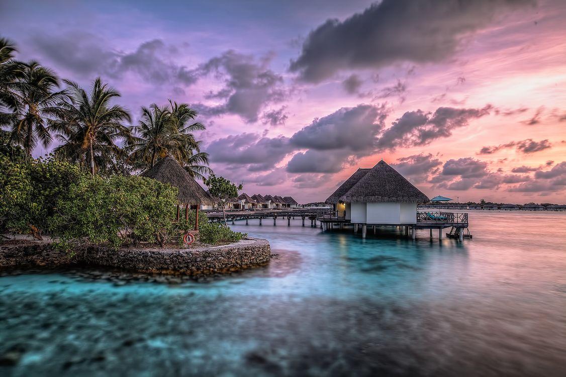 Фото бесплатно пляж, пальмы, домик, вода, небо, пейзажи