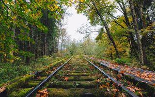 Фото бесплатно Сноквалми, Вашингтон, осень
