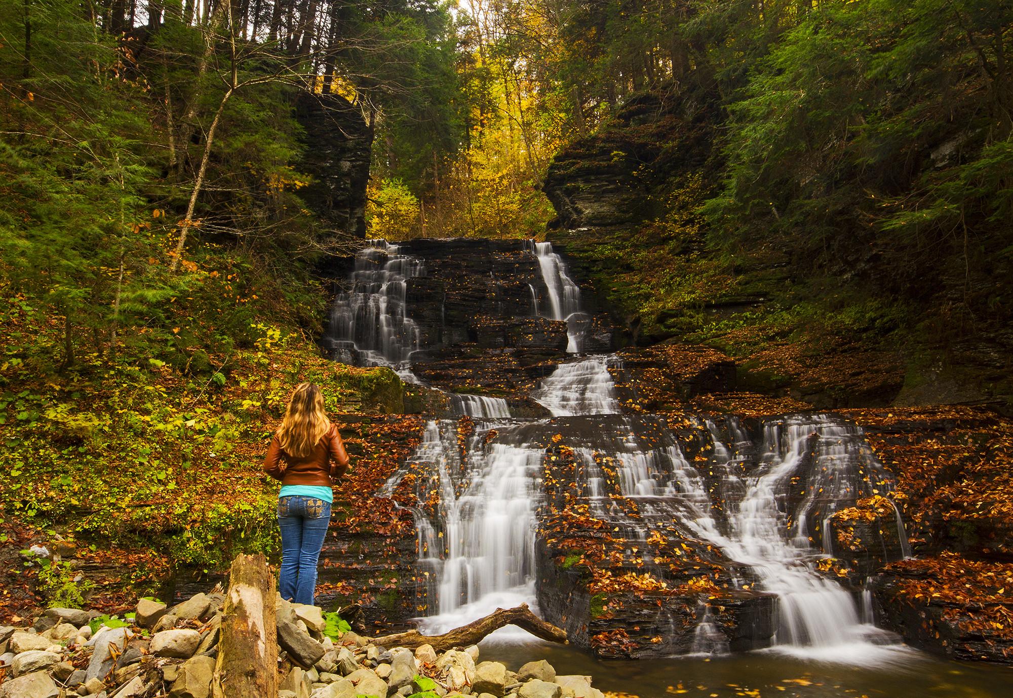 обои осень, лес, деревья, водопад картинки фото
