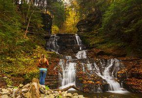 Бесплатные фото осень, лес, деревья, водопад, пейзаж
